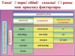Тамақ өнеркәсібінің салалық құрамы мен орналасу факторлары