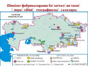 Шикізат фабрикаларына бағытталған тамақ өнеркәсібінің географиялық салалары