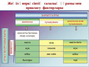 Жеңіл өнеркәсіптің салалық құрамы мен орналасу факторлары