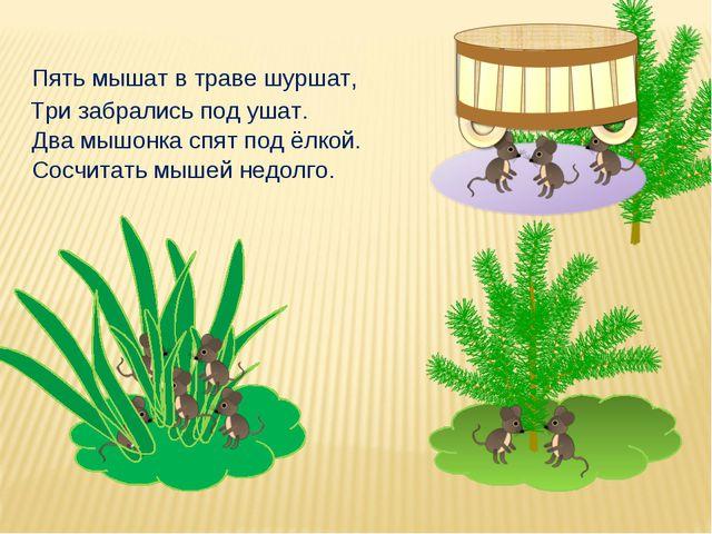 Сосчитать мышей недолго. Пять мышат в траве шуршат, Два мышонка спят под ёлко...