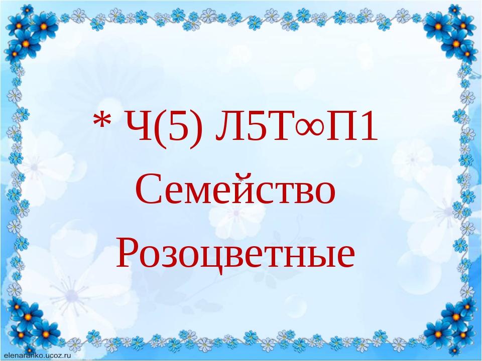 * Ч(5) Л5Т∞П1 Семейство Розоцветные *