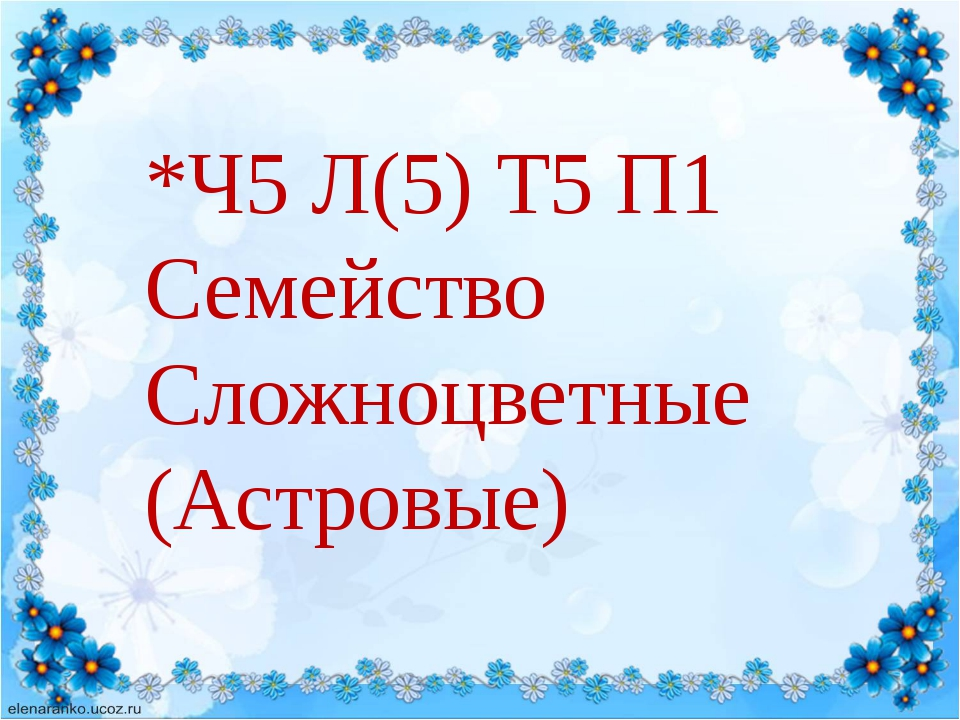*Ч5 Л(5) Т5 П1 Семейство Сложноцветные (Астровые)