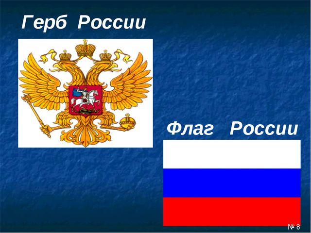 Герб России Флаг России № 8