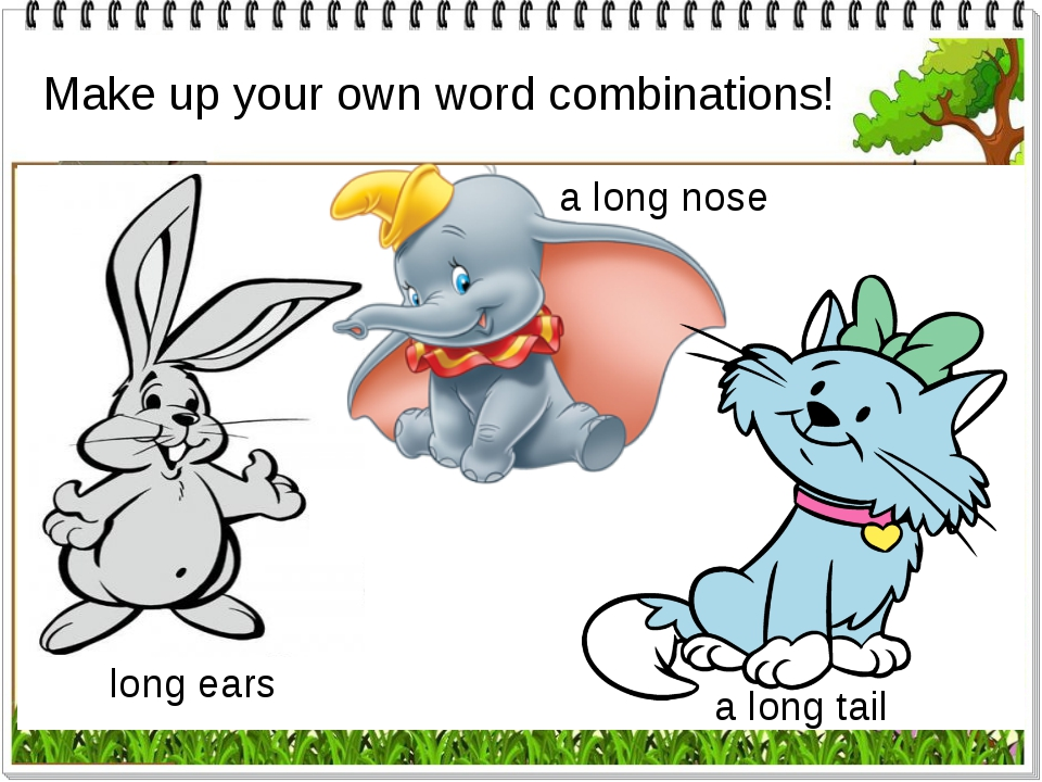 Make up your own word combinations! a long nose long ears a long nose a long...