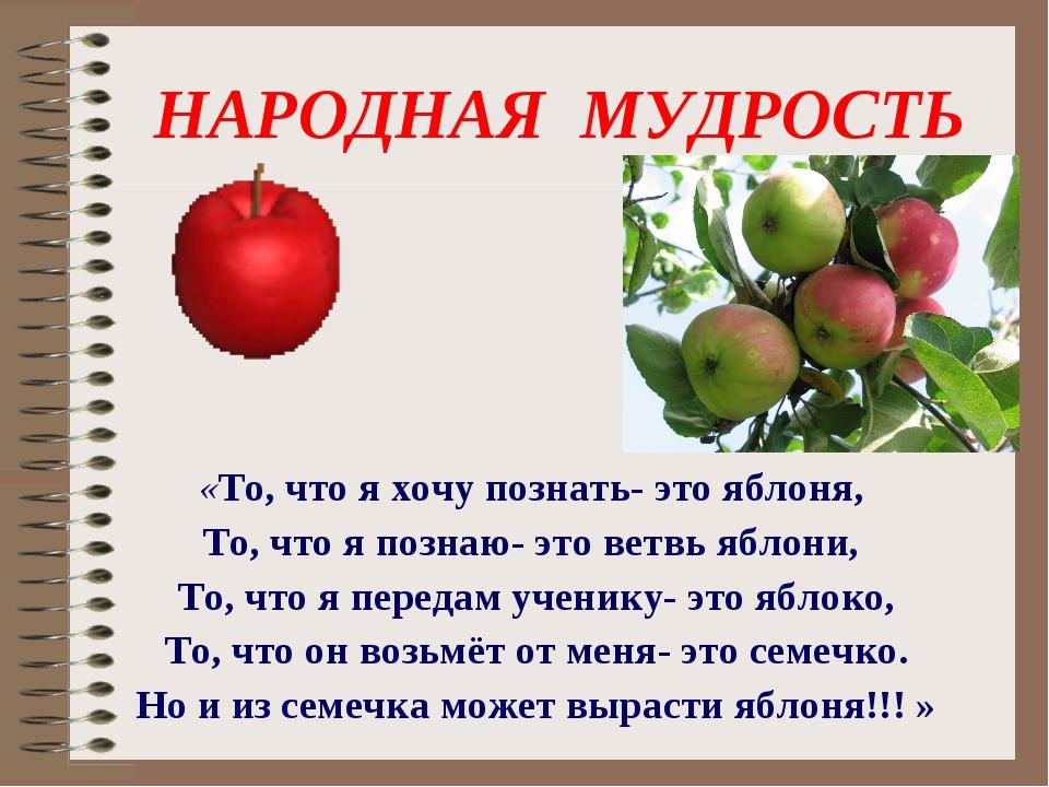 НАРОДНАЯ МУДРОСТЬ «То, что я хочу познать- это яблоня, То, что я познаю- это...