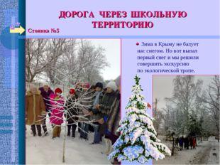ДОРОГА ЧЕРЕЗ ШКОЛЬНУЮ ТЕРРИТОРИЮ Стоянка №5 Зима в Крыму не балует нас снегом