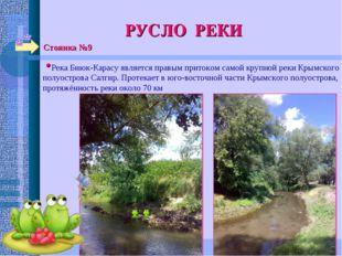 Стоянка №9 РУСЛО РЕКИ Река Биюк-Карасу является правым притоком самой крупной