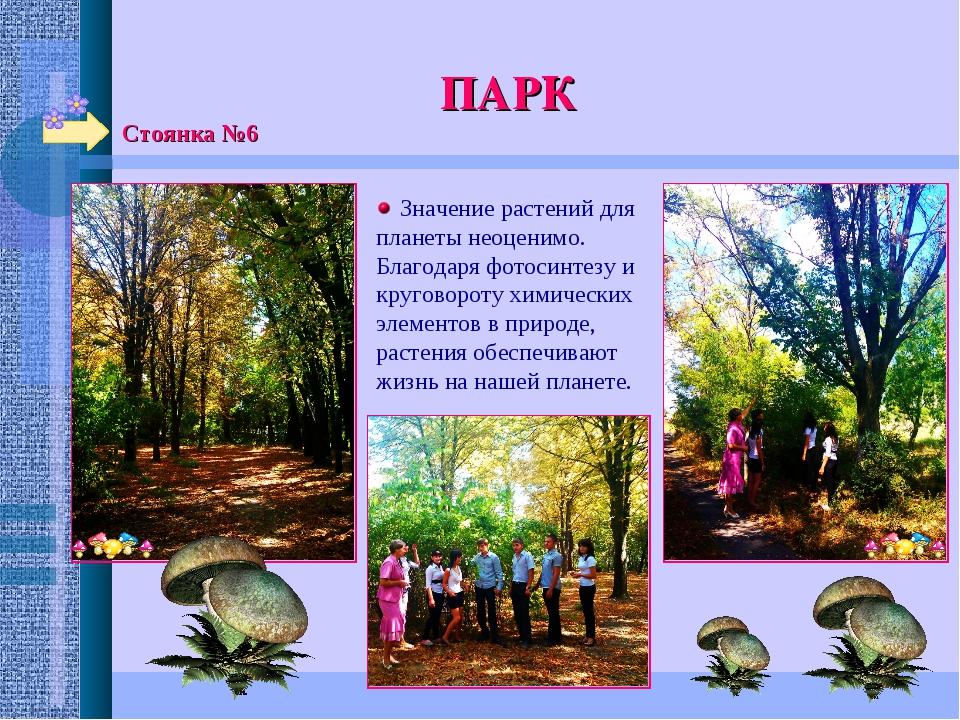 Стоянка №6 ПАРК  Значение растений для планеты неоценимо. Благодаря фотосинт...