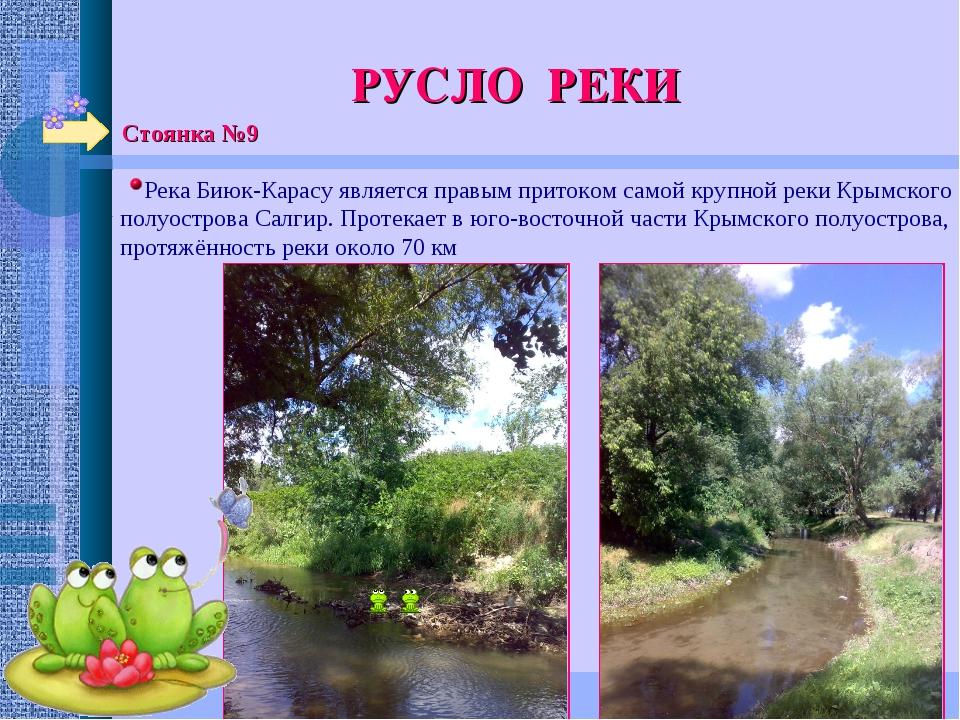 Стоянка №9 РУСЛО РЕКИ Река Биюк-Карасу является правым притоком самой крупной...