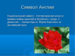 Символ Англии Национальный символ Англии-красная роза со времен войны красной