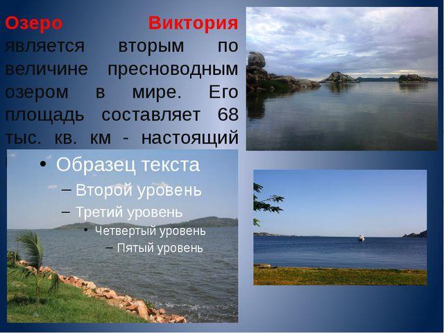 Озеро Виктория является вторым по величине пресноводным озером в мире. Его пл...