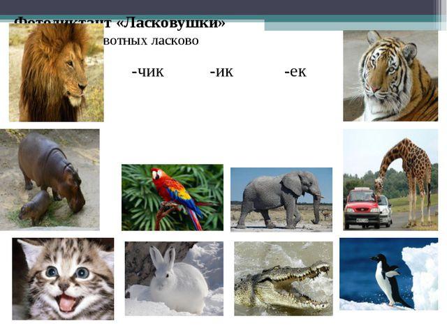 Фотодиктант «Ласковушки» назови животных ласково -чик-ик-ек