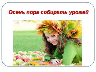Осень пора собирать урожай
