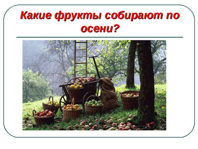 Какие фрукты собирают по осени?