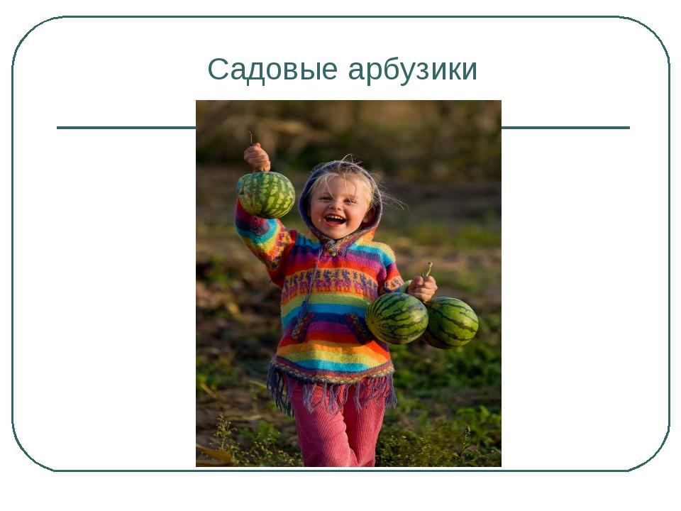 Садовые арбузики