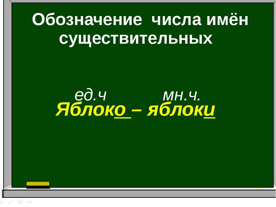Обозначение числа имён существительных ед.ч мн.ч. Яблоко – яблоки