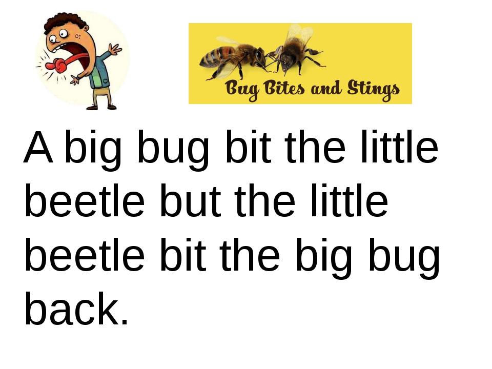 A big bug bit the little beetle but the little beetle bit the big bug back. Ф...