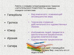 Работа о словарём литературоведческих терминов «ЧИТАТЕЛЬСКАЯ ГРАМОТНОСТЬ» пра