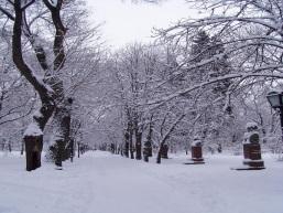 http://upload.wikimedia.org/wikipedia/commons/3/3e/Chisinau_Winter.jpg