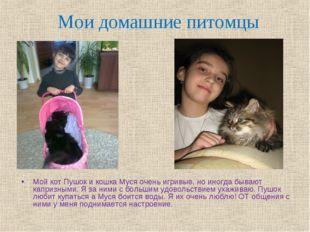 Мои домашние питомцы Мой кот Пушок и кошка Муся очень игривые, но иногда быва