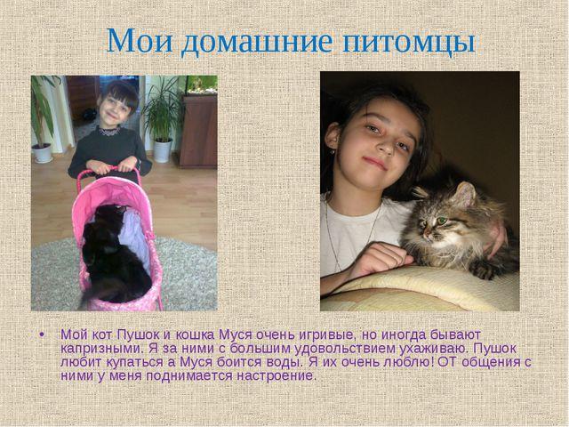 Мои домашние питомцы Мой кот Пушок и кошка Муся очень игривые, но иногда быва...