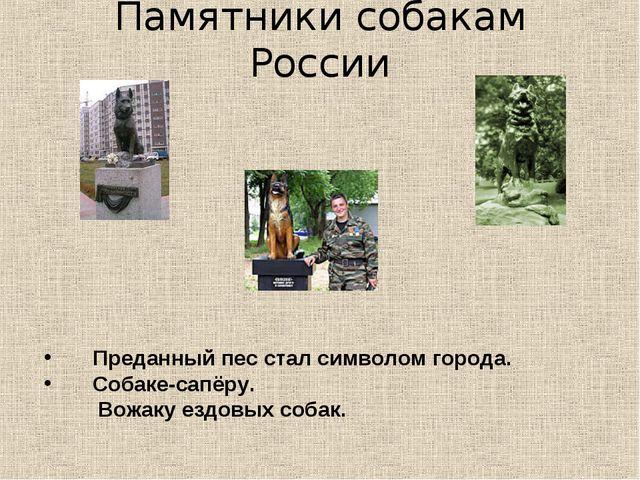 Памятники собакам России Преданный пес стал символом города. Собаке-сапёру. В...