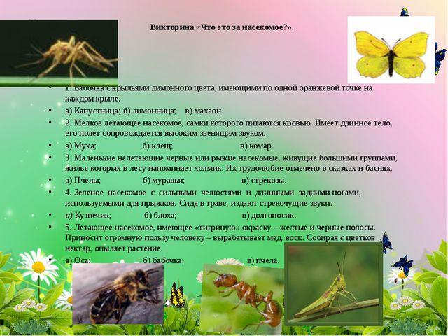 Викторина «Что это за насекомое?». 1. Бабочка с крыльями лимонного цвета, име...