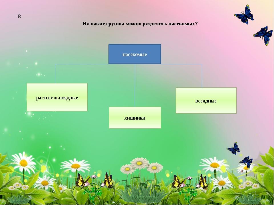 На какие группы можно разделить насекомых? растительноядные хищники всеядные...