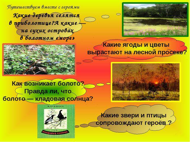 Какие деревья селятся в приболотице?А какие — на сухих островах в болотном «м...