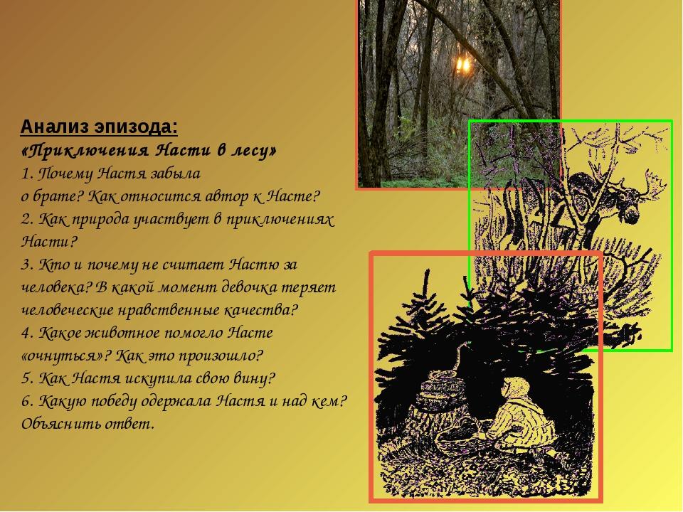 Анализ эпизода: «Приключения Насти в лесу» 1. Почему Настя забыла о брате? Ка...