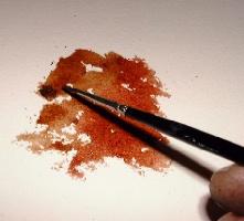 Урок. Как рисовать деревья