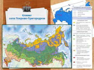 Климат села Покрово-Пригородное
