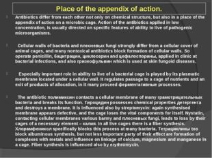 Place of the appendix of action. Antibiotics differ from each other not only