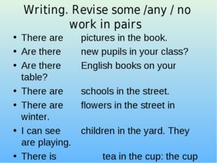 Writing. Revise some /any / no work in pairs There are  pictures in the book