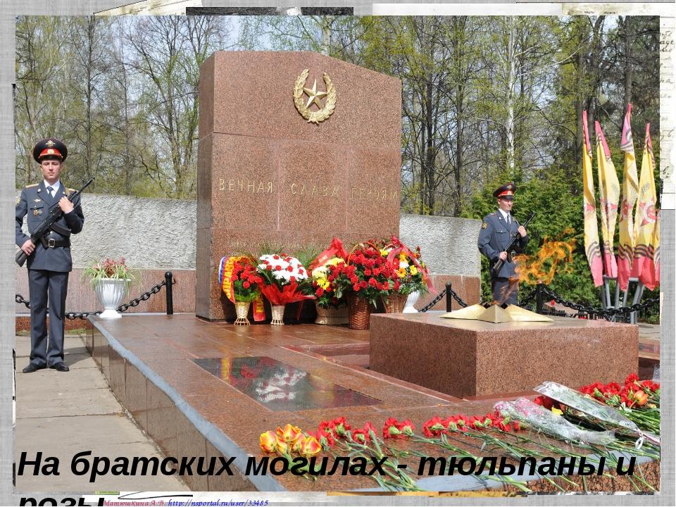 На братских могилах - тюльпаны и розы. Матюшкина А.В. http://nsportal.ru/user...