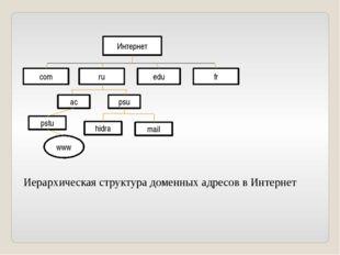 Интернет com ru edu fr ac psu pstu hidra mail www Иерархическая структура дом