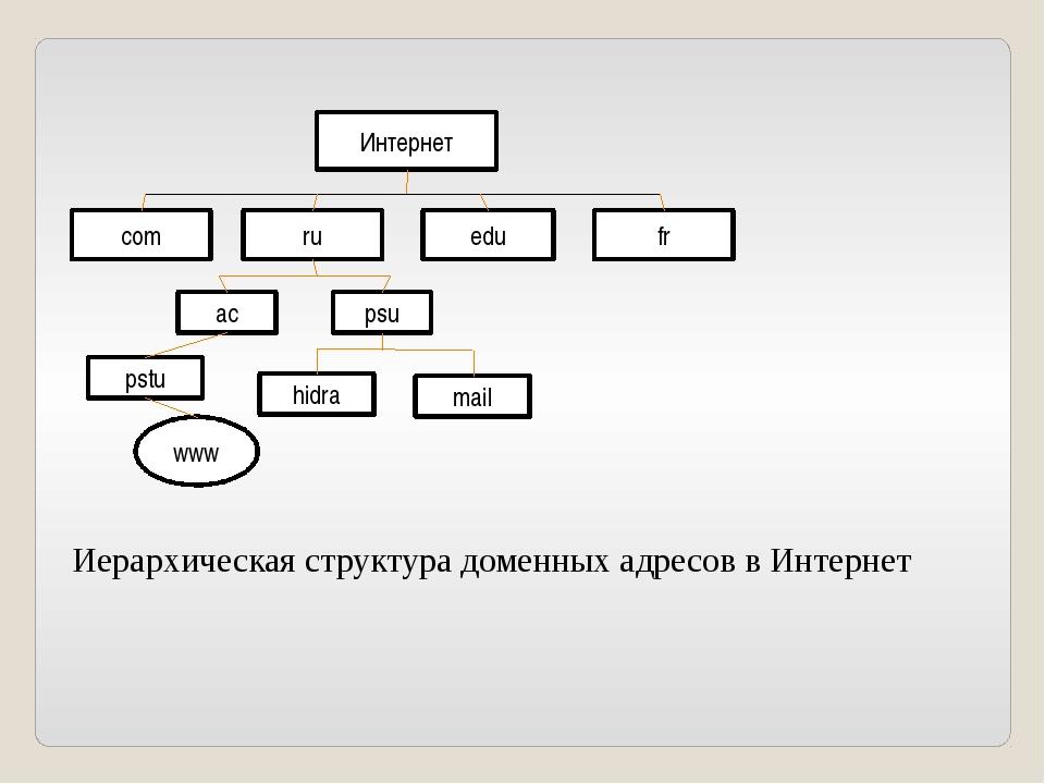 Интернет com ru edu fr ac psu pstu hidra mail www Иерархическая структура дом...
