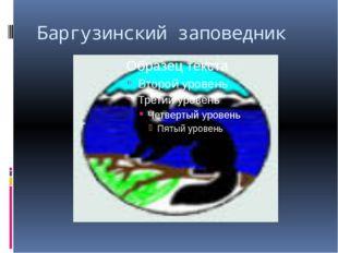 Баргузинский заповедник