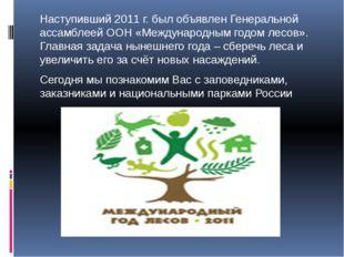 Наступивший 2011 г. был объявлен Генеральной ассамблеей ООН «Международным го
