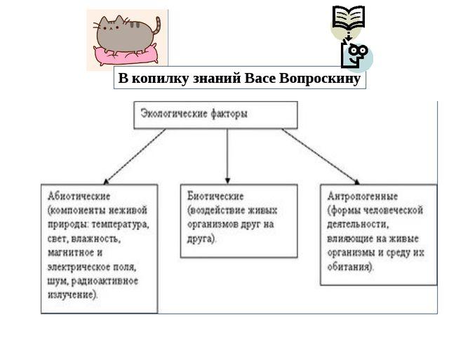 В копилку знаний Васе Вопроскину