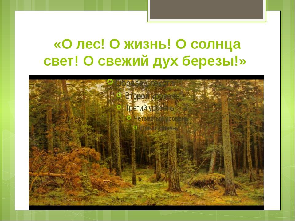 «О лес! О жизнь! О солнца свет! О свежий дух березы!»
