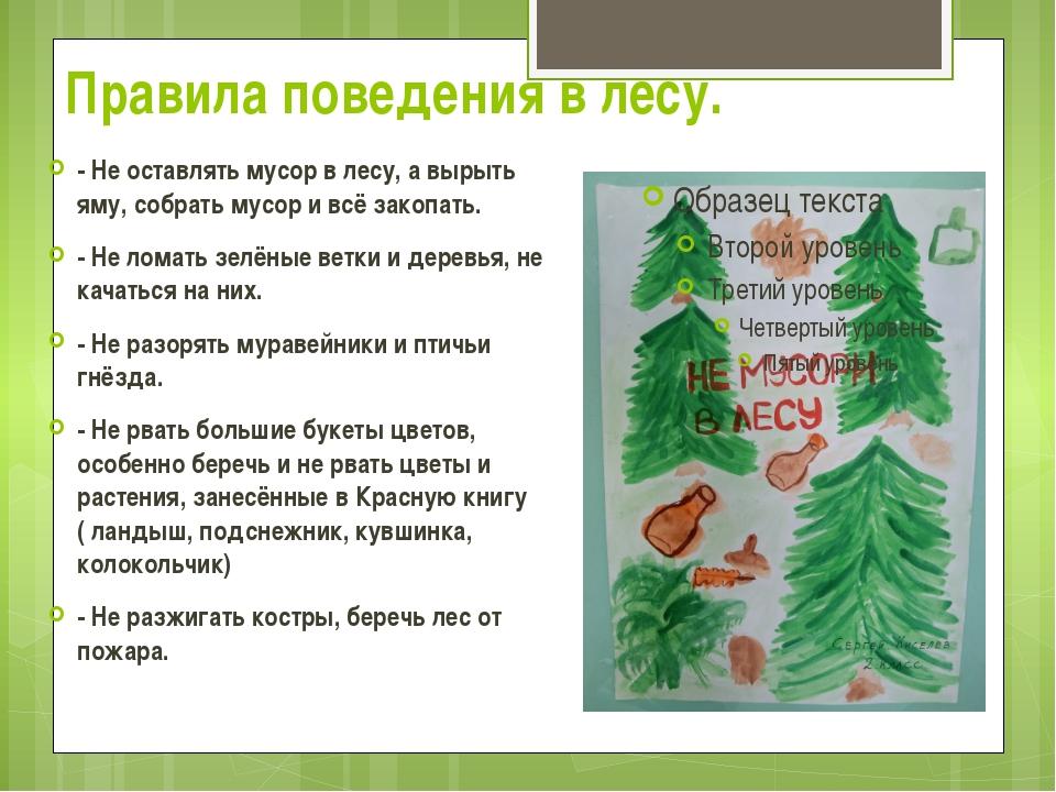 Правила поведения в лесу. - Не оставлять мусор в лесу, а вырыть яму, собрать...