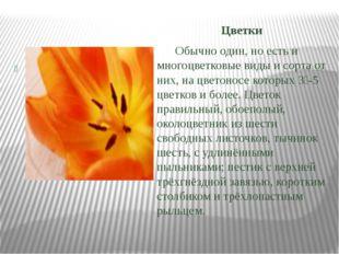 Цветки Обычно один, но есть и многоцветковые виды и сорта от них, на цветоно