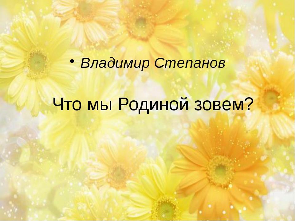 Владимир Степанов Что мы Родиной зовем?