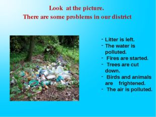 Litter is left. The water is polluted. Fires are started. Trees are cut down.