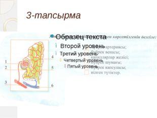 3-тапсырма