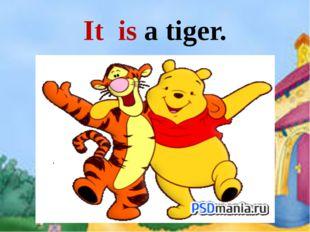 It is a tiger.