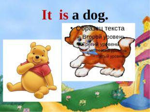 It is a dog.