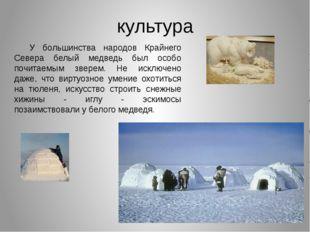 культура У большинства народов Крайнего Севера белый медведь был особо почита