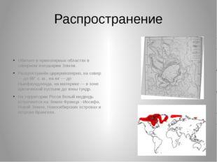 Распространение Обитает в приполярных областях в северном полушарии Земли. Ра